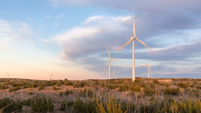 Onshore wind_Amazon_Texas