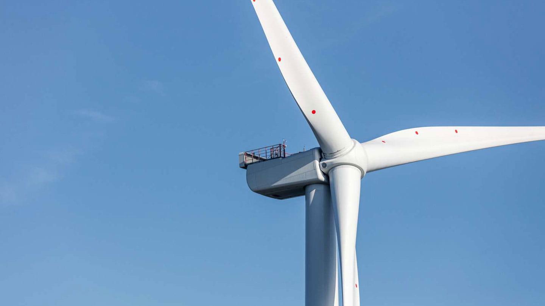 Wind tubine