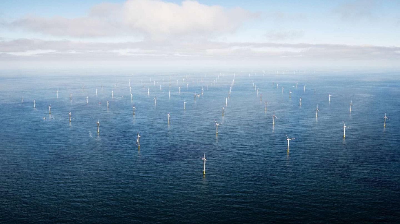 Image result for ørsted wind farm
