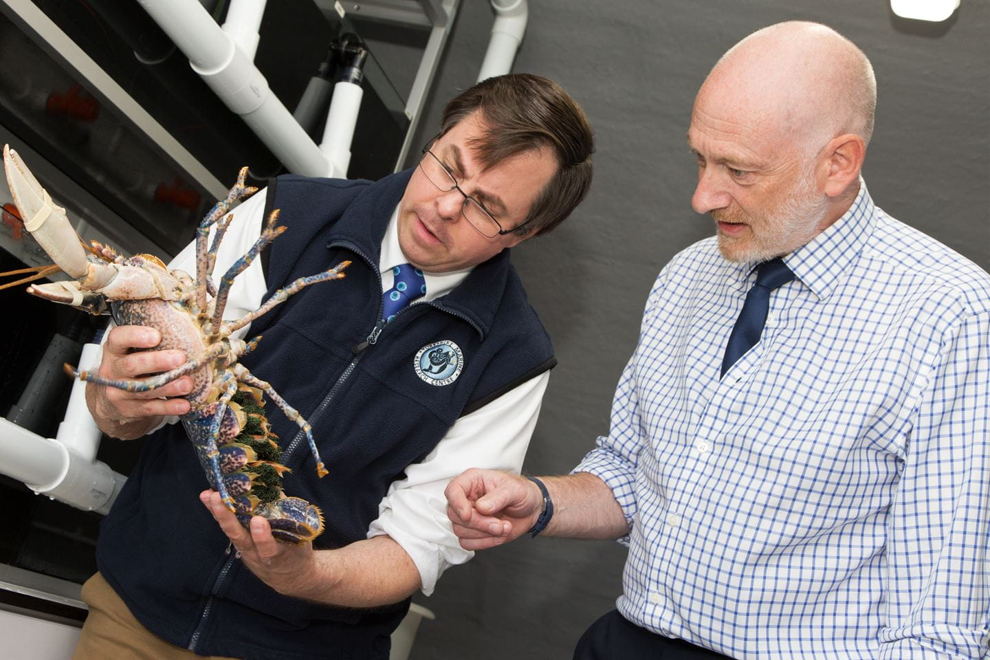 Researchers show Ørsted's Benj Sykes around the Yorkshire Marine Research Centre